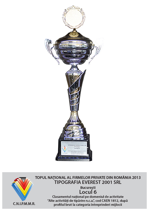 6th Position in National Top of Private Companies from Romania - Gross Profit